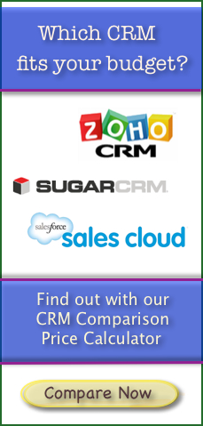 SaaS-CRM-Price-Calculator /></a><p align=