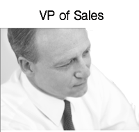Manager / VP